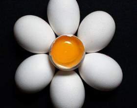 Страви з яєць, рецепти - рулет, суп-пюре, салат і яйця в тесті фото