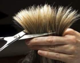 Якщо волосся січеться по всій довжині: поради по відновленню та догляду фото