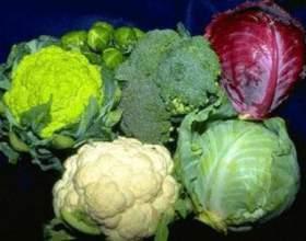 """Рецепти страв з капустою - брокколі, цвітної і китайської С""""РѕС'Рѕ"""